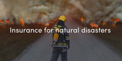 Insurance For Natural Disasters
